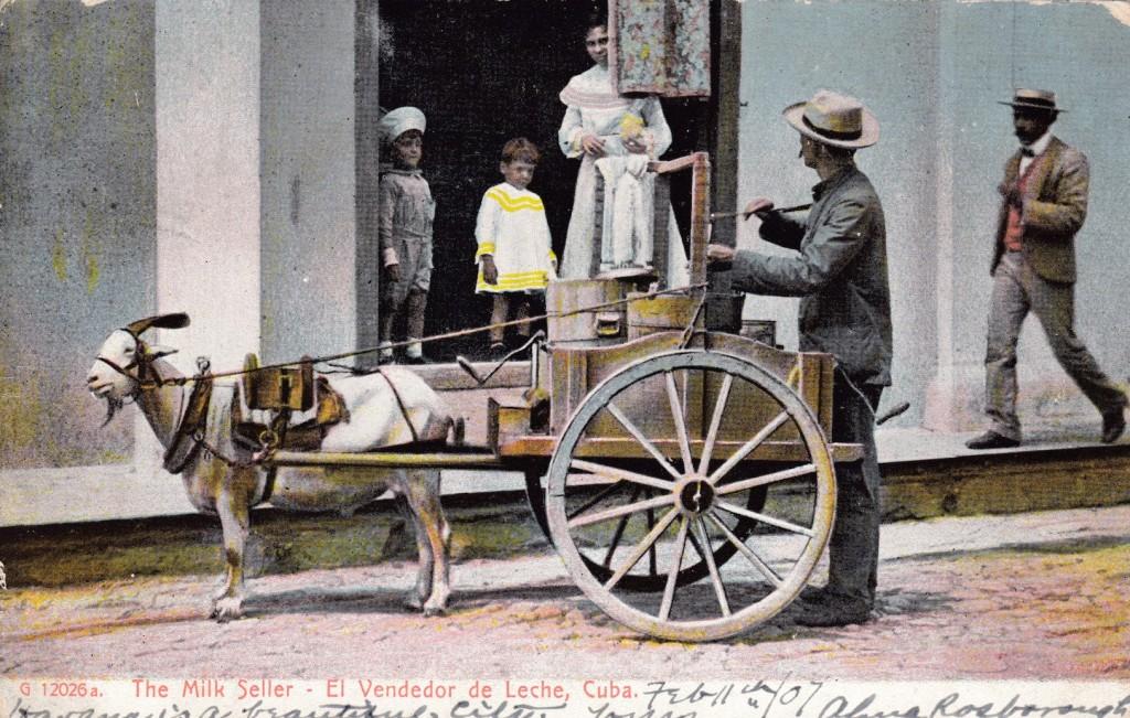 """The Milk Seller,"" photomechanical postcard. Photograph taken in Cuba, postcard printed in New York, N.Y. Postmarked Feb 11, 1907."